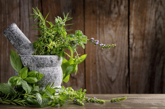 Nutritious Herbs for Green Juicing